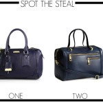 Spot the Steal: Blueberry Bags