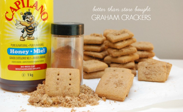 GrahamCrackersHEADER