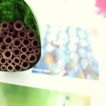 DIY: Mason Bee House