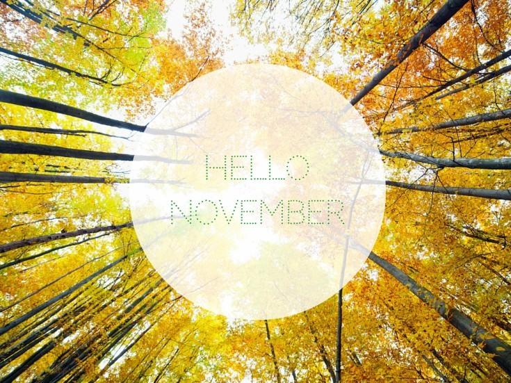 Hey November,