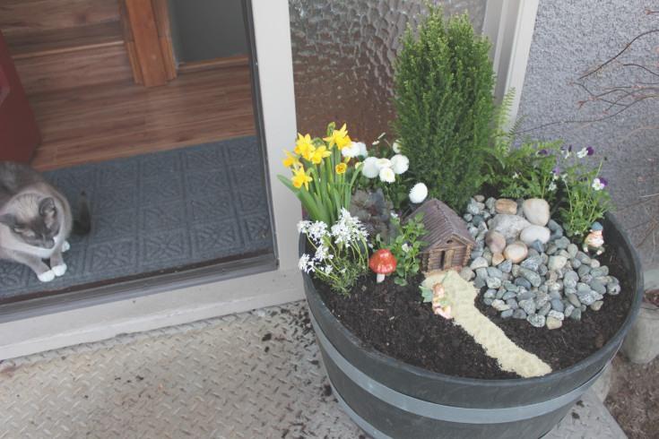 Diy front door fairy garden little miss mama for Fairy front door