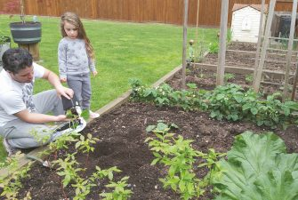 How to prepare a spring garden, including tips from someone who speaks fluent in plant.