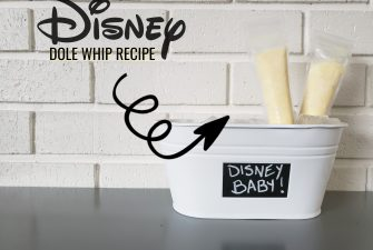 Disney Dole Whip Recipe (popsicles)